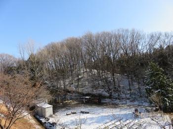 雪に覆われた広場.JPG
