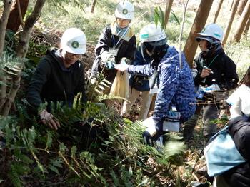 P.2 2020.02.05 なな山緑地観察会.JPG